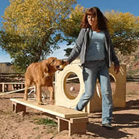 Filomena, owner of the Doggy Dude Ranch walks one of the dogs in her care.