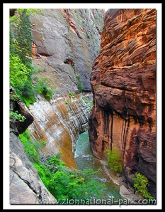 Zion National Park canyon