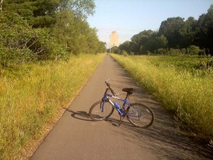 Along the Pere Marquette Trail.