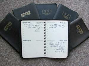 Sample view of the diaries