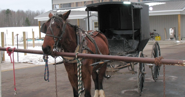 The Amish in Clare County (4/4)