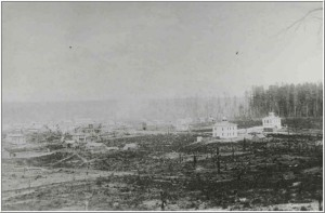 This view of Harrison was probably taken about 1880-81 and would have been taken somewhere near the site of Carr's Devil's Ranch Stockade.