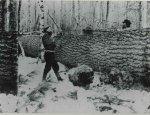 Logging108
