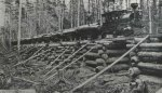 Logging193